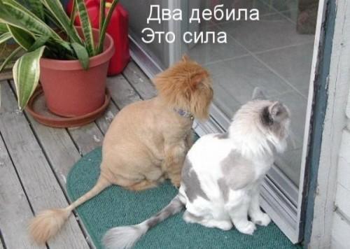 330499_319288.jpg