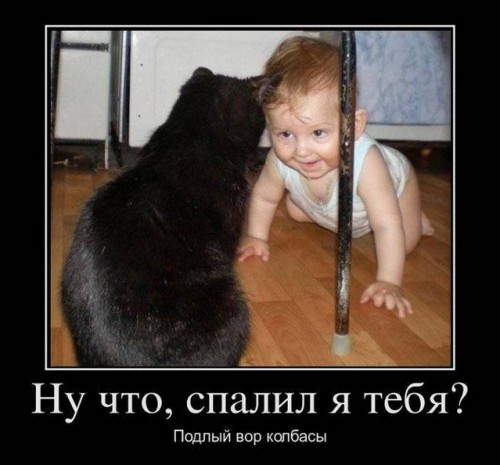 1329485359_demotivatory_35.jpg