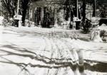 Шодуаровский парк. Фото 1962 года